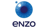 Enzo - agencja marketingowa